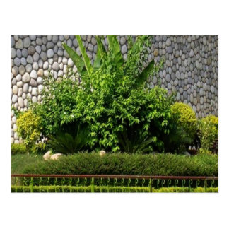 Picture Perfect Green EverGreen AWGP Temple Wall Post Cards