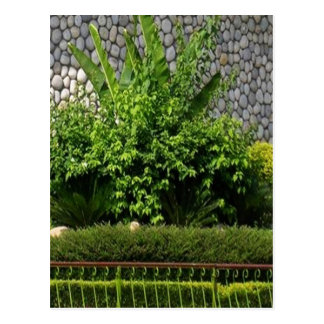 Picture Perfect Green : EverGreen AWGP Temple Wall Postcard