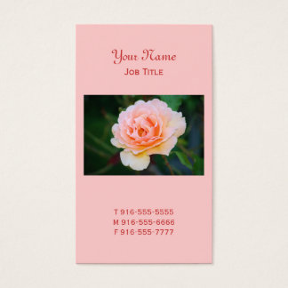 Picture Perfect Rose Business Cards