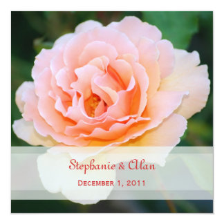 Picture Perfect Rose Wedding Invitations