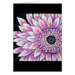 Picture PINK GERBER DAISY Cards