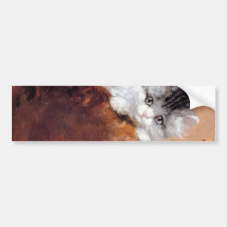 Picture scratching of kitten bumper sticker