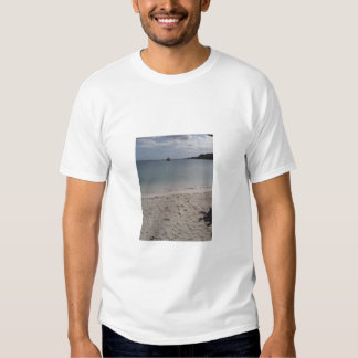 Picture T-Shirt