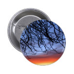 Pictures at Dawn Pinback Button