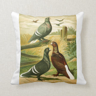 pictures of birds gifts pillows throw pillows