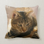 "Pictures of cats gifts pillows throw pillows cats<br><div class=""desc"">Beautiful pictures of cats art gifts pillows cats throw pillows lumbar designs with images vintage pictures of cats art beautiful images pictures of cats art very cheap throw pillows lumbar,  cats throw pillows,  cats pillows</div>"