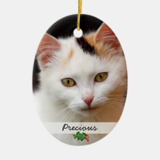 Pictures of Pets, Double-Sided Ornament