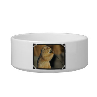 Pictures of Prairie Dogs Pet Bowl
