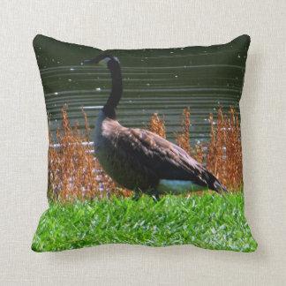 Picturesque Canada Goose Pillow