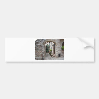Picturesque old village with flowers bumper sticker