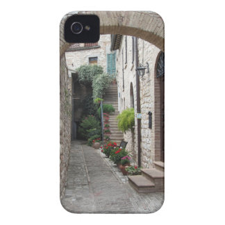 Picturesque old village with flowers iPhone 4 case