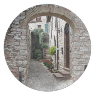 Picturesque old village with flowers plate