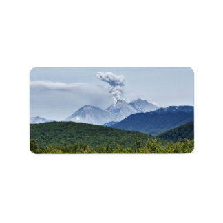 Picturesque volcano eruption and green forest label
