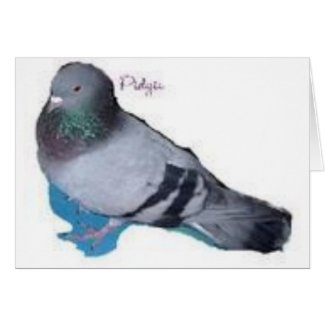 Pidgie The Pidgie Fund Pigeon Card