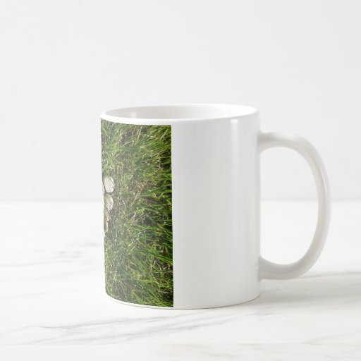 Pie de piedra taza de café