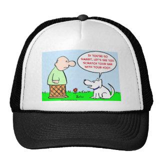 pie del oído del rasguño del perro elegante gorra