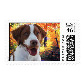 Pie The Brittany Postage