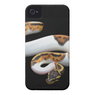 piebald ball python Case-Mate iPhone 4 cases