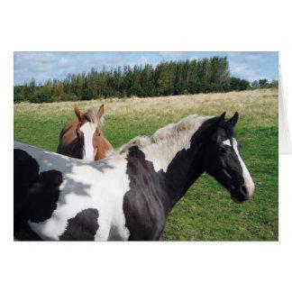 Piebald & Chestnut Horses Card