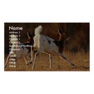 Piebald deer running business cards
