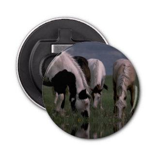 Piebald_Horse_Family,_Magnetic_Bottle_Opener. Button Bottle Opener