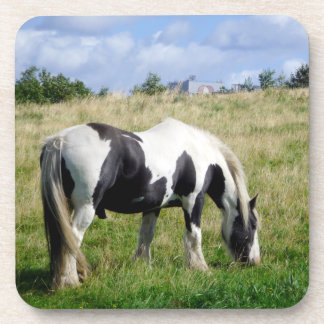 Piebald Horse Grazing on Grassy Hill Photograph Beverage Coaster