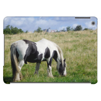 Piebald Horse Grazing on Grassy Hill Photograph iPad Air Cover