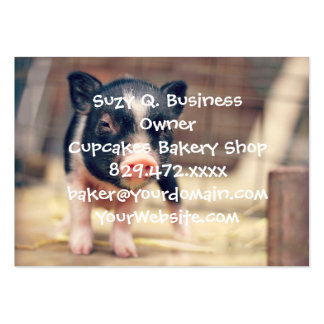 Piebald Pig puppy for Pig Lovers Large Business Cards (Pack Of 100)