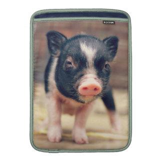 Piebald Pig puppy for Pig Lovers MacBook Sleeves