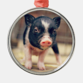 Piebald Pig puppy for Pig Lovers Metal Ornament