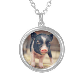 Piebald Pig puppy for Pig Lovers Round Pendant Necklace