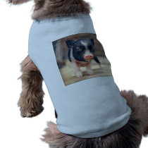 Piebald Pig puppy for Pig Lovers Shirt