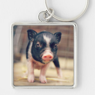 Piebald Pig puppy for Pig Lovers Silver-Colored Square Keychain