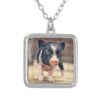 Piebald Pig puppy for Pig Lovers Square Pendant Necklace