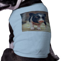 Piebald Pig puppy for Pig Lovers Tee