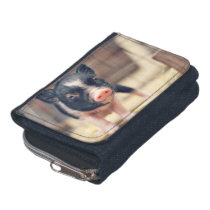 Piebald Pig puppy for Pig Lovers Wallet