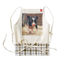 Piebald Pig puppy for Pig Lovers Zazzle HEART Apron