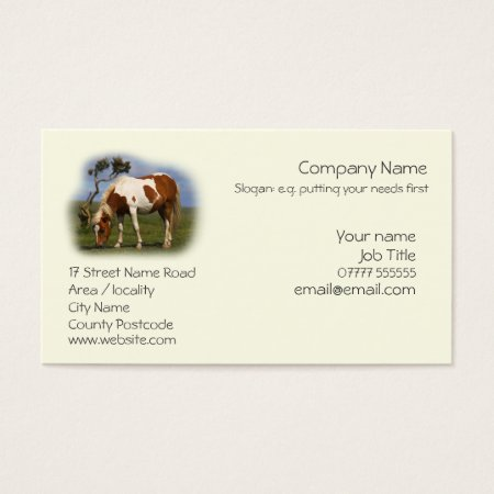 Piebald Pony business cards template