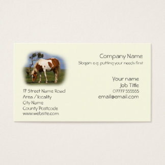 Piebald Pony quietly grazing Business Card