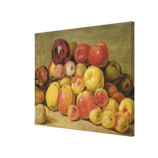 Pieces of Fruit Canvas Print