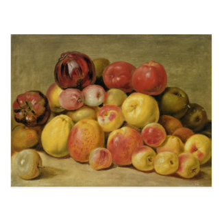 Pieces of Fruit Postcard