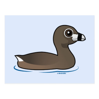 Pied-billed Grebe Postcard