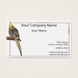 Pied Cockatiel on a Branch with White Background Business Card