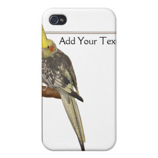 Pied Cockatiel on a Branch with White iPhone 4 Case
