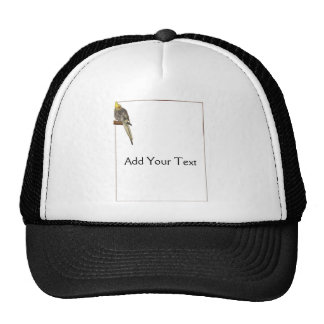 Pied Cockatiel on a Branch with White Trucker Hat