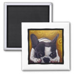 Pied Frenchie Nap 2 Inch Square Magnet