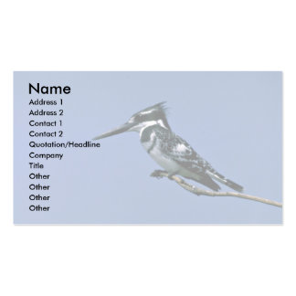 Pied Kingfisher Business Card