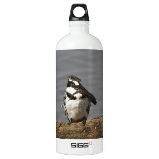 Pied Kingfisher Water Bottle
