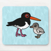 Pied Oystercatcher with chick Mousepad