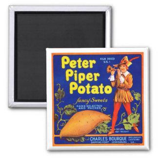 Pied Piper Potato 2 Inch Square Magnet